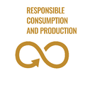 Responsible Consumption and Production by Design